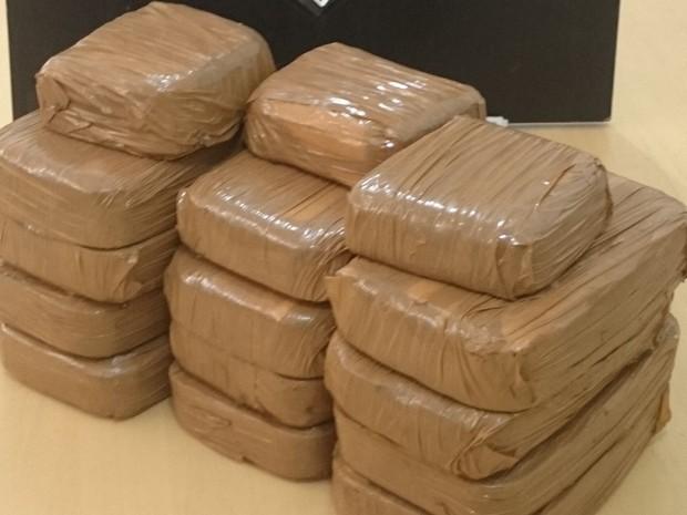 Cocaína era transportada dentro de um caminhão de produtos de limpeza (Foto: PF)