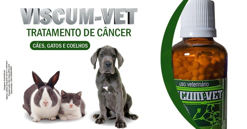 Viscum-vet é o melhor tratamento para câncer de cães e gatos