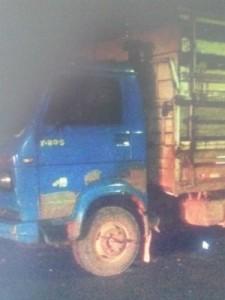 Caminhão levou sete cabeças de gado de fazenda de deputado  (Foto: Polícia Militar/Divulgação)