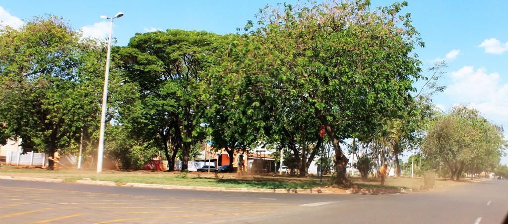 Avenida José João Dib em Ituiutaba recebe manutenção paisagística