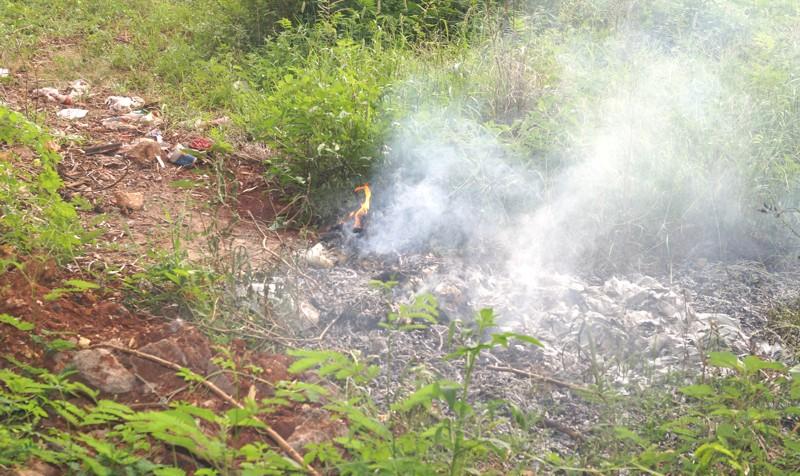 O acumulo de lixo auxilia na proliferação dos escorpiões