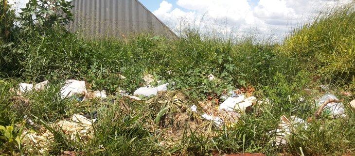 Lixo jogado às margens da estrada / Foto: Paulo Braga
