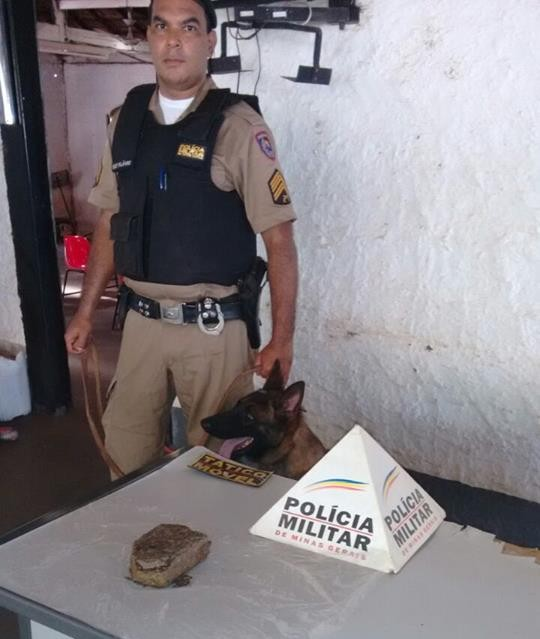 Droga foi encontrada com a ajuda de um cão farejador