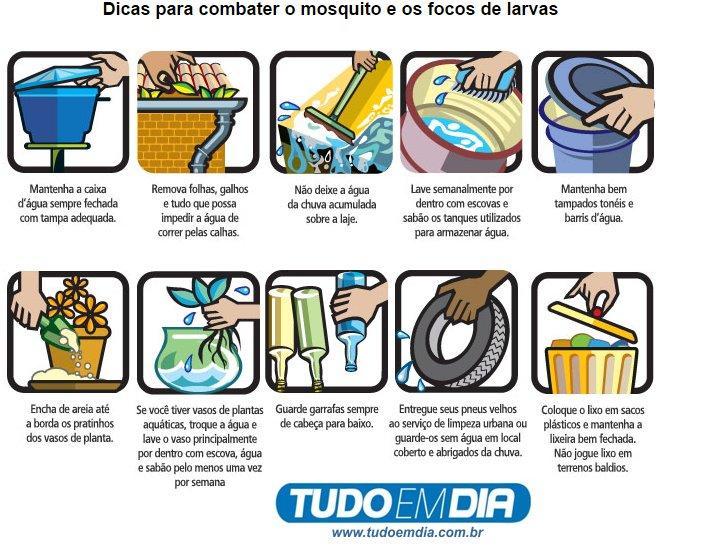 formas de evitar a dengue