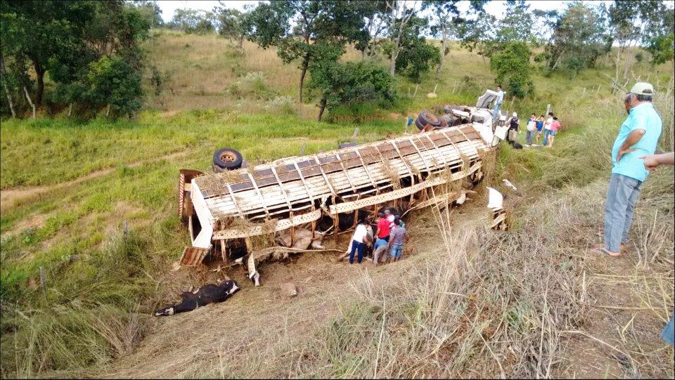 Caminhão de gado despenca em ribanceira e motorista morre / Foto: Patrocínio On-line