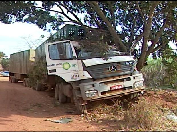 carreta choca-se contra árvore na zona rural em Ituiutaba