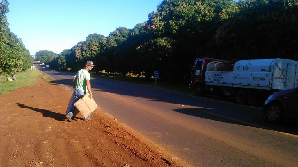 Prefeitura faz manutenção a limpeza às margens da Rodovia