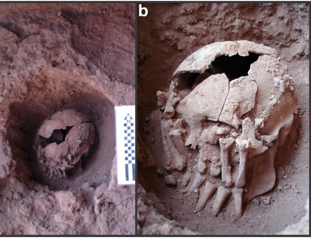 Caso mais antigo de decapitação nas Américas ocorreu em Minas há 9.000 anos
