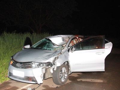 acidente envolvendo animal na pista tirou a vida de engenheiro