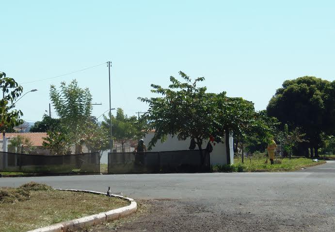 Áreas verdes de Ituiutaba estão sempre recebendo atenção especial