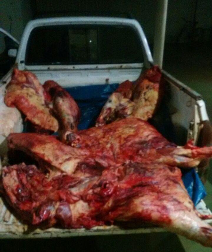 14072016-carne-carroceria