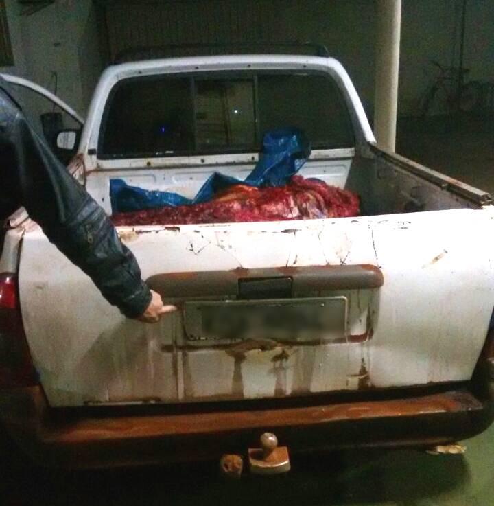 Animal abatido foi encontrado em carroceria de veículo / Foto: PMMG