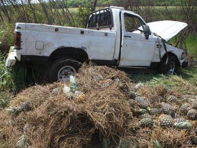Caminhonete foi parar em meio a vegetação e ficou totalmente destruída após a capotagem