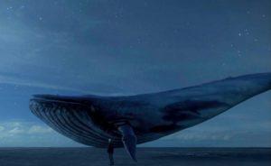 Imagem da baleia azul é utilizada como código para o jogo do suicídio (foto: Reprodução/Facebook)