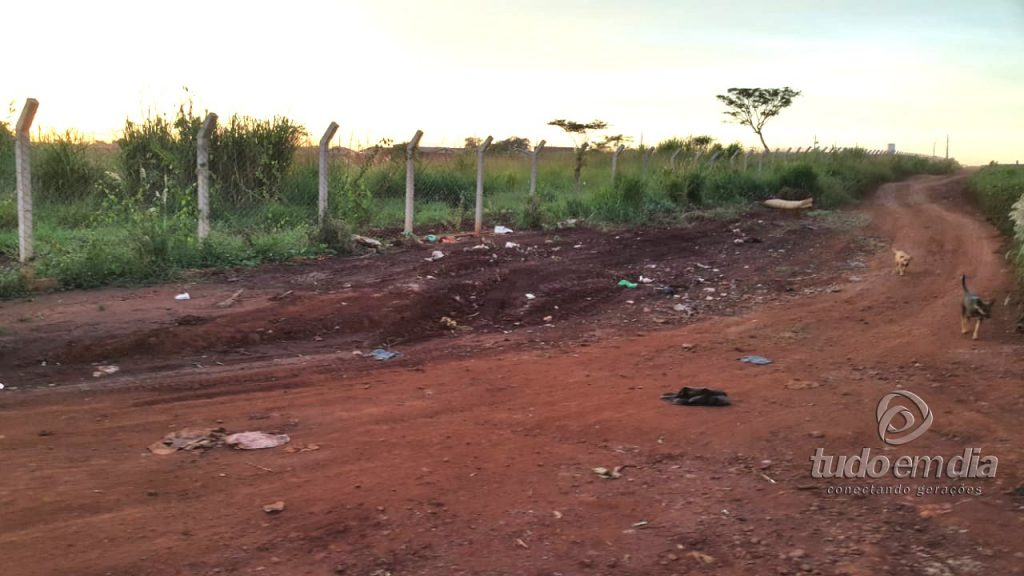 Nesta foto de arquivo do Tudo Em Dia, a prefeitura municipal de Capinópolis havia efetuado a limpeza do local (Foto: Paulo Braga).