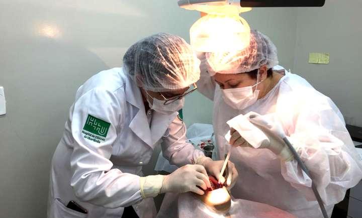 40 pacientes fazem extração do terceiro molar pela rede pública de saúde em Capinópolis (Foto/Divulgação)