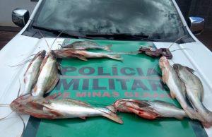 pesca_piracema (3)