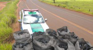 Ao todo, vinte sacas de carvão vegetal estavam na caminhonete (Foto: PMA/Divulgação)