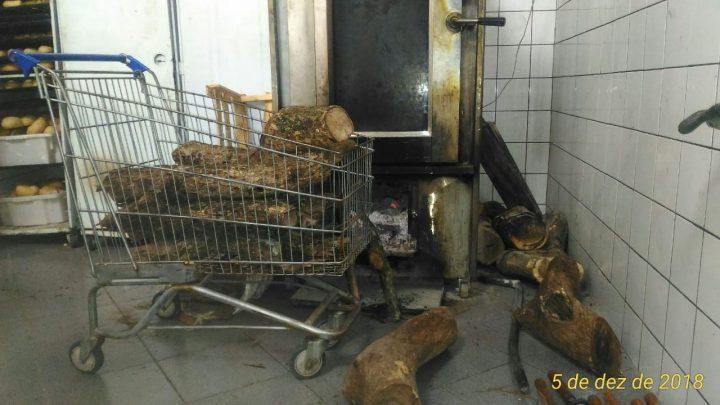 Madeira sem origem legal comprovada foi encontrada na padaria do supermercado —Foto: PMA/Divulgação