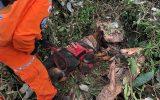 Veja o momento em que o cão do Bombeiros de Uberaba encontram corpo em Brumadinho