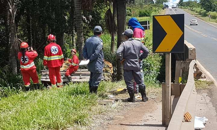 Um coqueiro impediu que o caminhão caísse no córrego (Foto: Bombeiros/Divulgação)