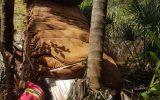 Caminhão chegou a cair no córrego Vertente Grande (Foto: Bombeiros/Divulgação)