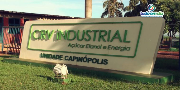 CRV Industrial (Foto: Paulo Braga/Tudo Em Dia)