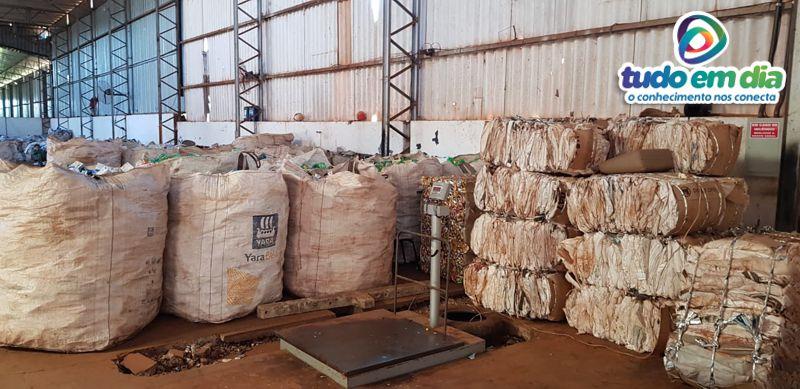 Toda a produção da cooperativa é vendida para compradores no Estado de Minas (Foto: Paulo Braga / Tudo Em Dia)