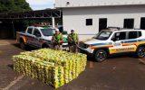 Peso da droga superou uma tonelada (foto: Polícia Militar Rodoviária/Divulgação)