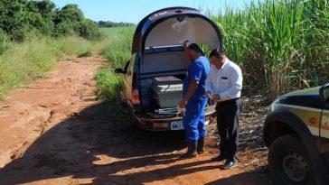 Corpo de Sueli Aparecida da Silva, 37 anos, foi encontrado há cerca de 15km de Ituiutaba (Foto: PCMG/Divulgação)