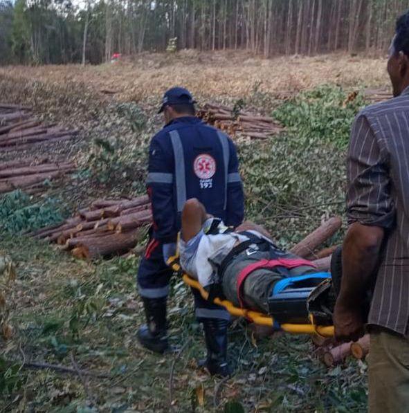 Trabalhador ficou ferido durante a queda da árvore (Foto: Samu/Divulgação)