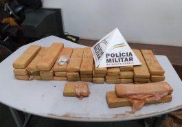Maconha apreendida (Foto: PMMG/Divulgação)