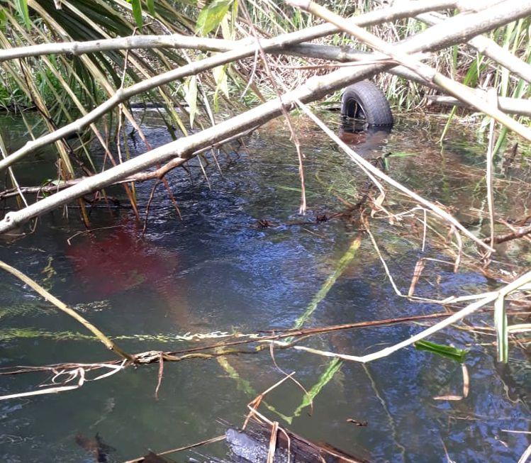 Carro ficou capotado e submerso em um lago próximo à Santa Vitória (Foto: Divulgação Bombeiros)