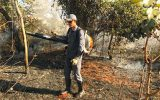 Bombeiro durante contenção de chamas (Foto: Bombeiros/Divulgação)