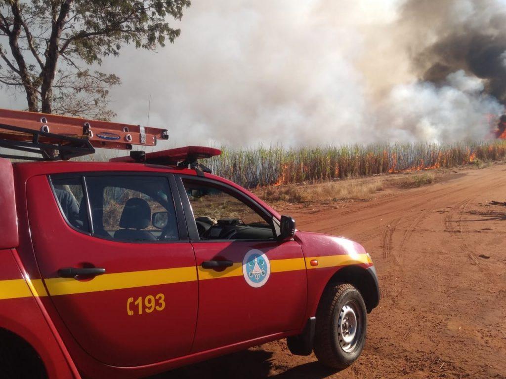 (Foto: Bombeiros/Divulgação)
