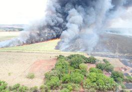 Uma grande área de vegetação e foi atingida e consumida pelo incêndio (Foto: PMMA/Divulgação)