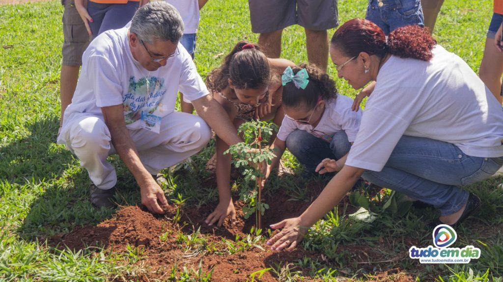 Uma árvore foi plantada no canteiro da José João Dib (Foto: Gabriel Kazuto)