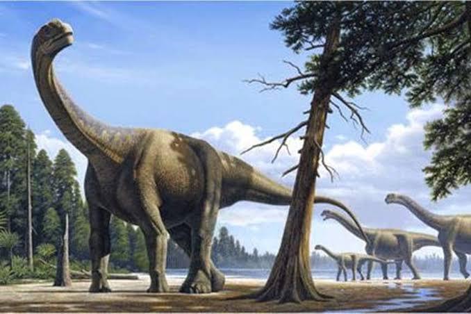 Titanossauro (Gravura: Reprodução)