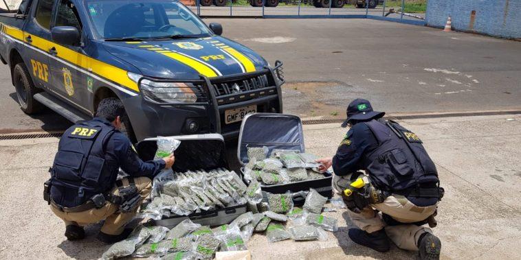 Maconha foi apreendida pela PRF (Foto: Divulgação/PRF-MG)