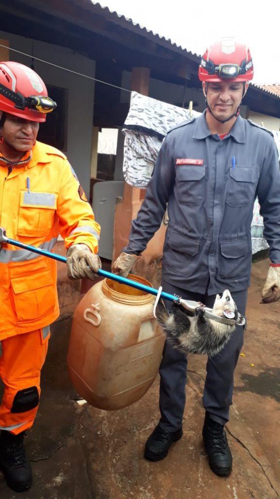 (Foto: 2° Pelotão de bombeiros de Ituiutaba/Divulgação)