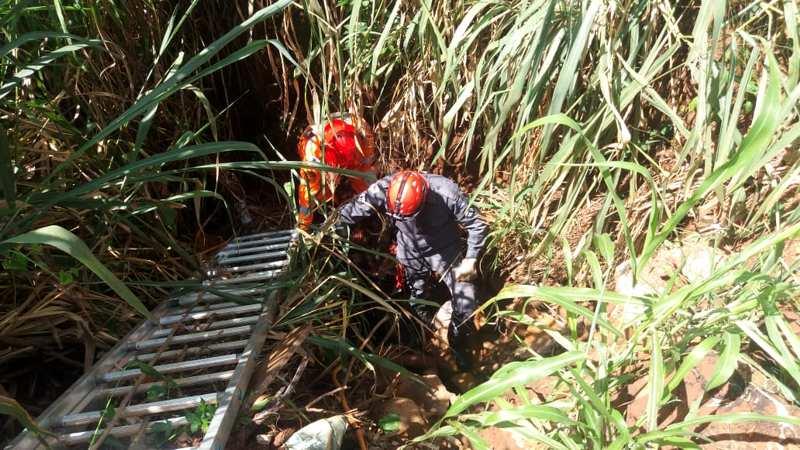 Cinco bombeiros foram empenhados no resgate do homem | Foto: Bombeiros / Divulgação