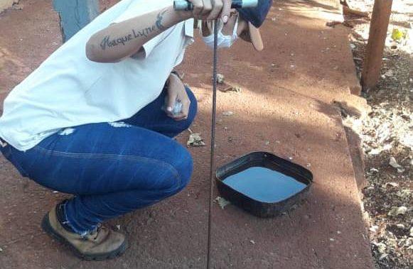 Funcionária do setor de endemias analisa bebedouro de cão a procura de larvas do mosquito da dengue   Foto: Divulgação