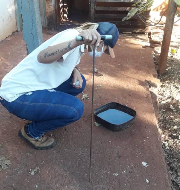 Funcionária do setor de endemias analisa bebedouro de cão a procura de larvas do mosquito da dengue | Foto: Divulgação