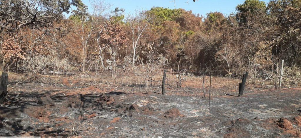 Área de preservação permanente ficou totalmente danificada   Foto: PMMA