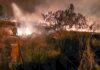 incendio gerson baduy2